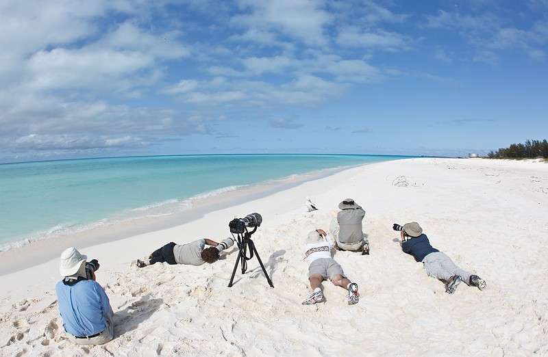photographers-working-masked-booby-_w3c6941-sand-island-midway-nwr