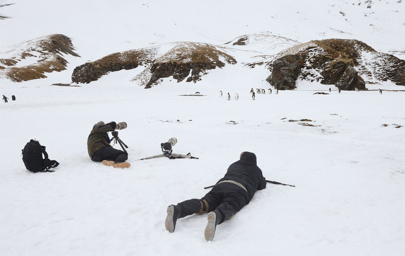 bird-photographers-and-king-penguins-in-the-snow-_q8r9431-fortuna-bay-south-georgia