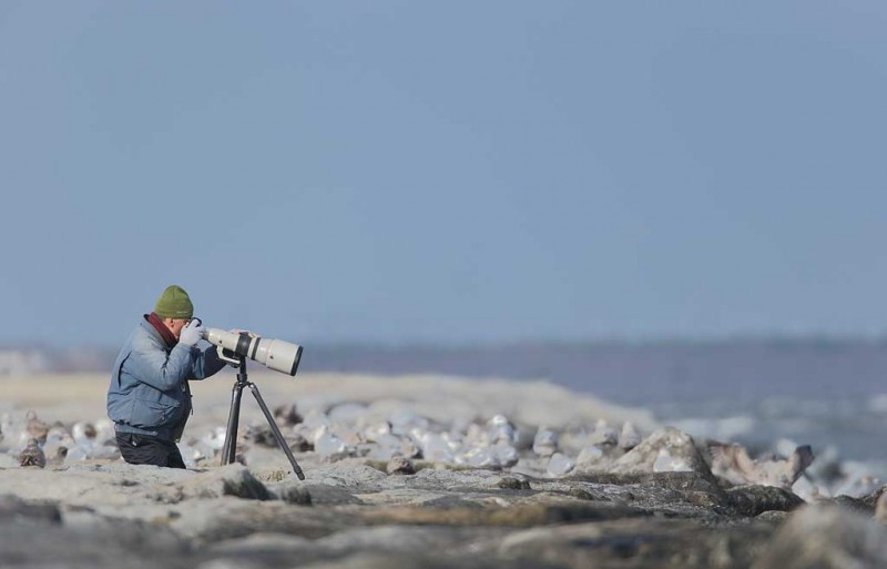billy-wingfield-on-the-jetty-w800mm-f-5