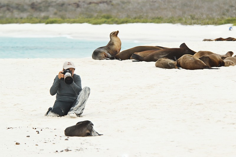 denise-ippolito-w-sea-lions-_y9c9463-gardner-bay-hood-island-galapagos