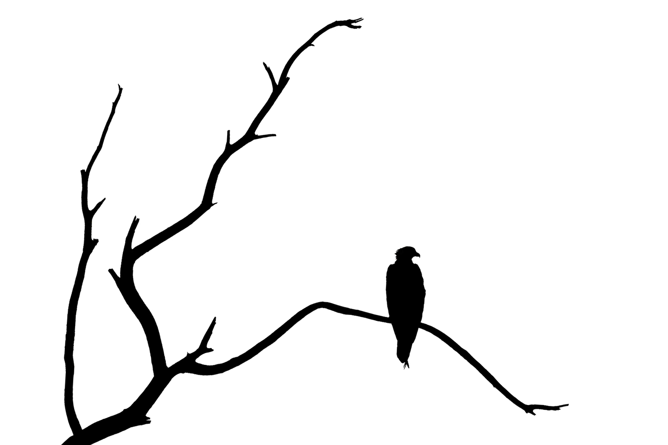 I Love You Clipart Black And White further Black And White Apple Tree Clipart as well Collectionsdwn Simple Branch Silhouette moreover Simple Black And White Tree likewise  on wallpaper 20tree