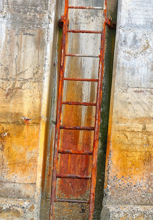 harbor-ladder-_A0I1021-Seahouses,-UK