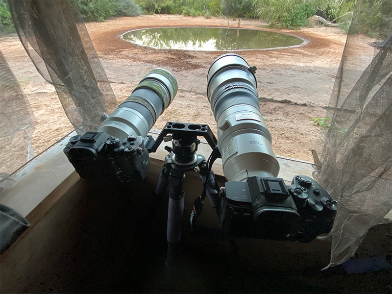 twinshooter-front-IMG_9719