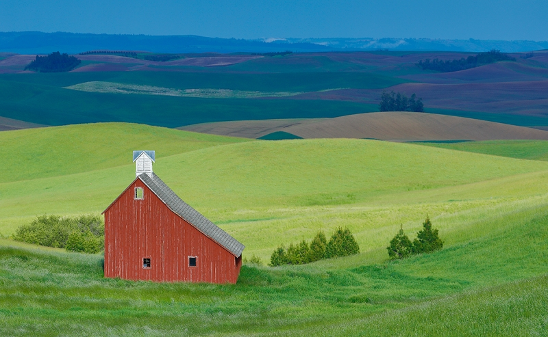 Salt-Barn-in-sweet-light-_P3A7400-Palouse,-WA