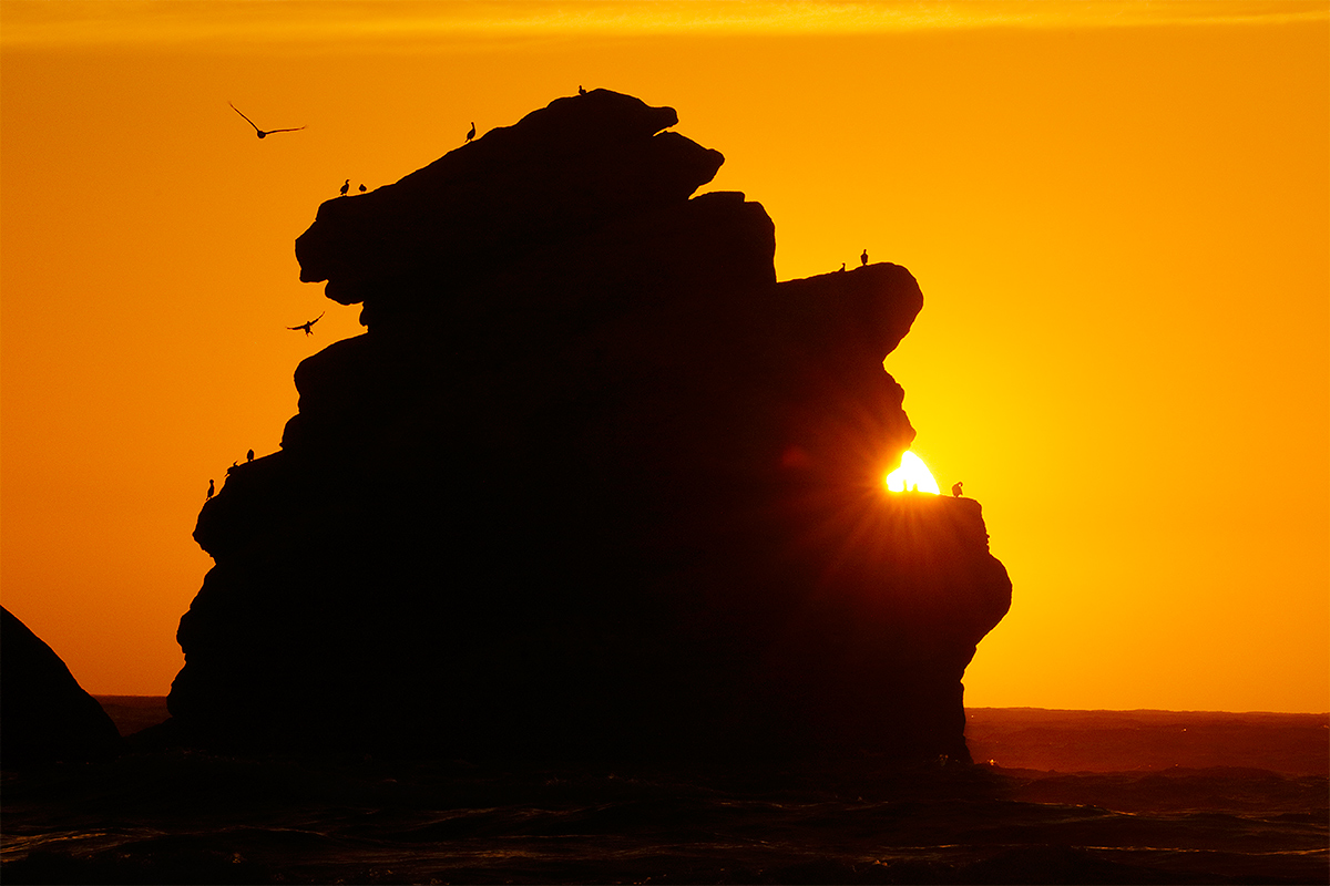 bird-sh_t-rock-_y8a6642-morro-bay-ca