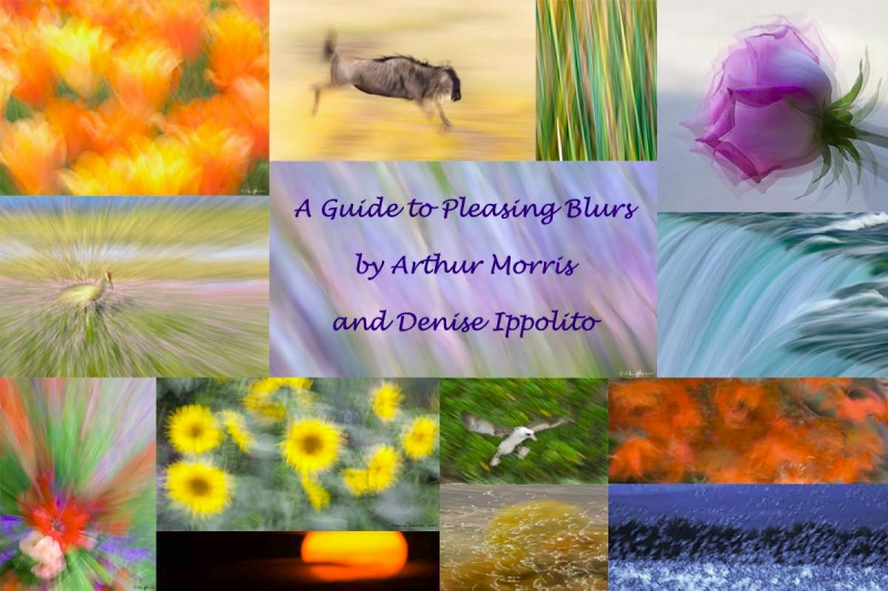 a-guide-to-pleasing-blurs