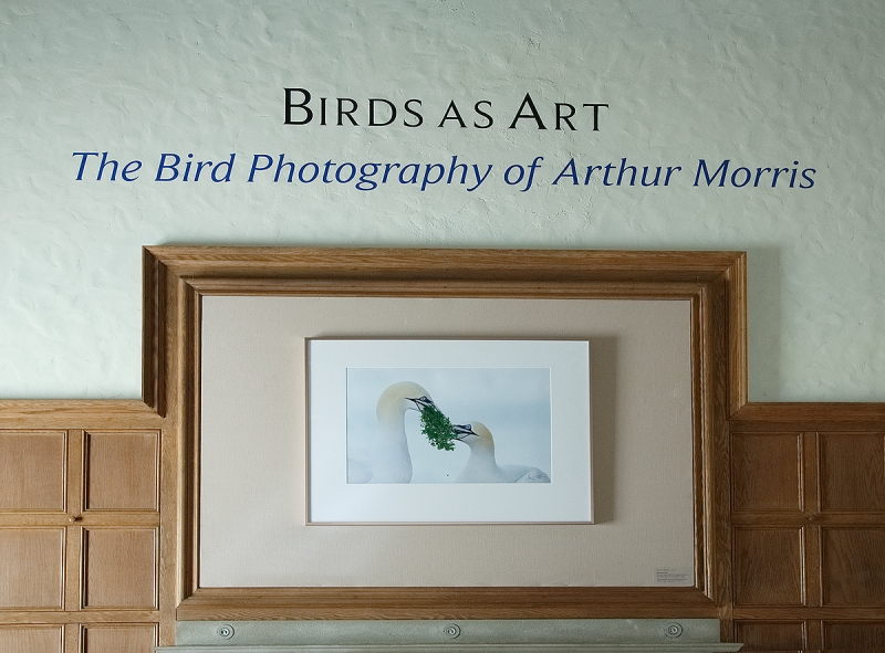 exhibition-title-_a1c1783-museum-of-american-bird-art-at-mass-audubon-canton-ma