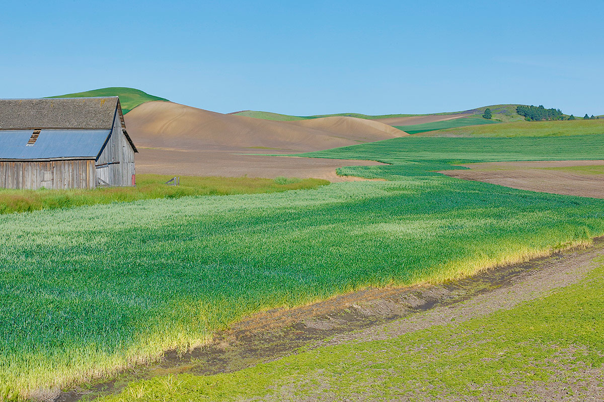 farm-fields-w-old-barn-95mm-_a1c0535-the-palouse-wa