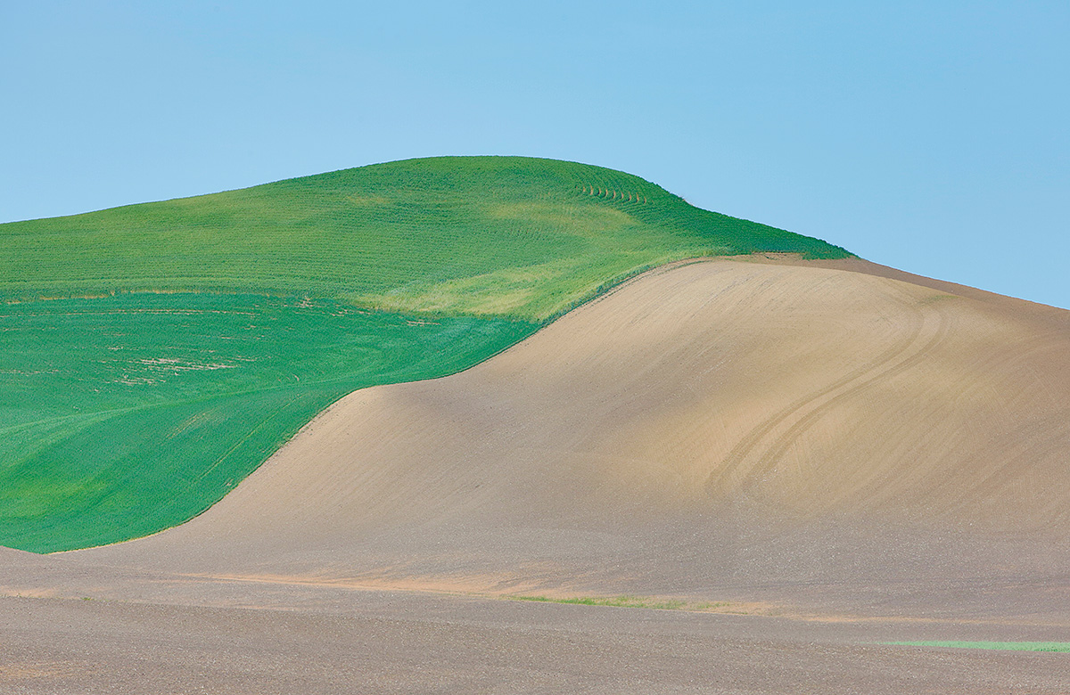 fram-fields-with-dirt-_a1c0667-the-palouse-wa