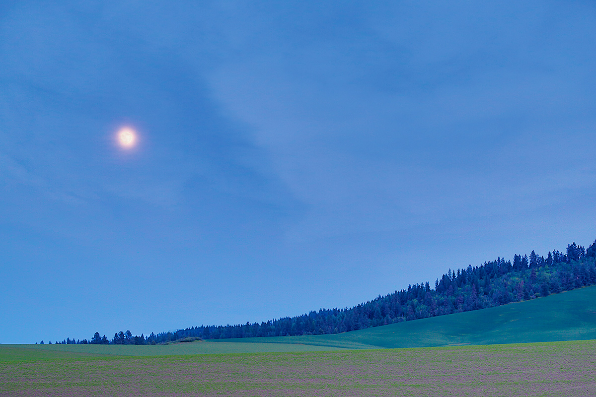 full-moon-over-wooded-hillside-_a1c1186-the-palouse-wa
