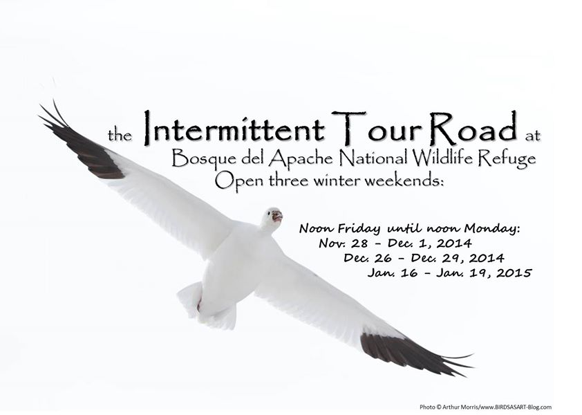intermittent-tour-road
