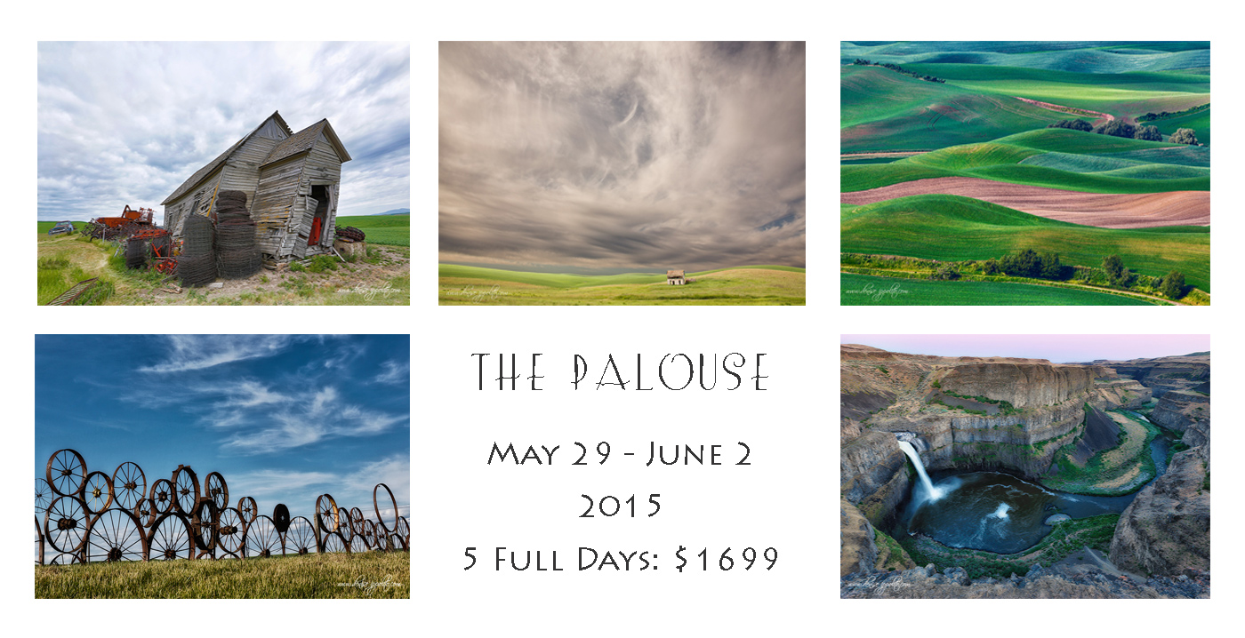 palouse-card-2015-denise_0