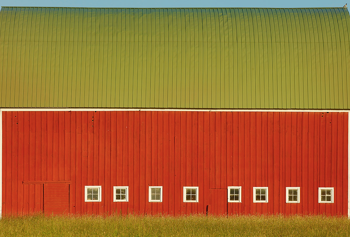 red-barn-with-green-roof-and-rock-dove-_t0a0577the-palouse-wa