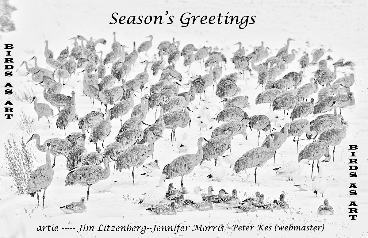 seasons-greetings-2014-ab