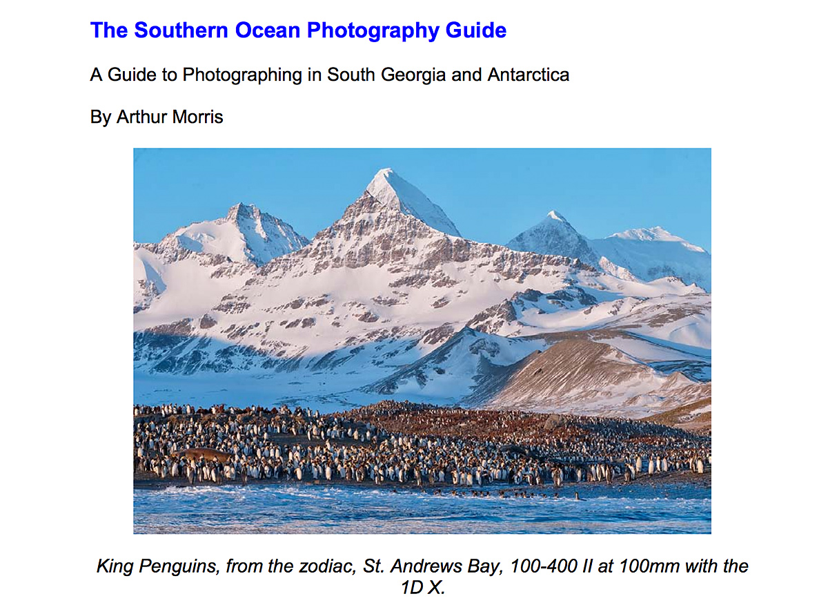 southernoceanphotoguide