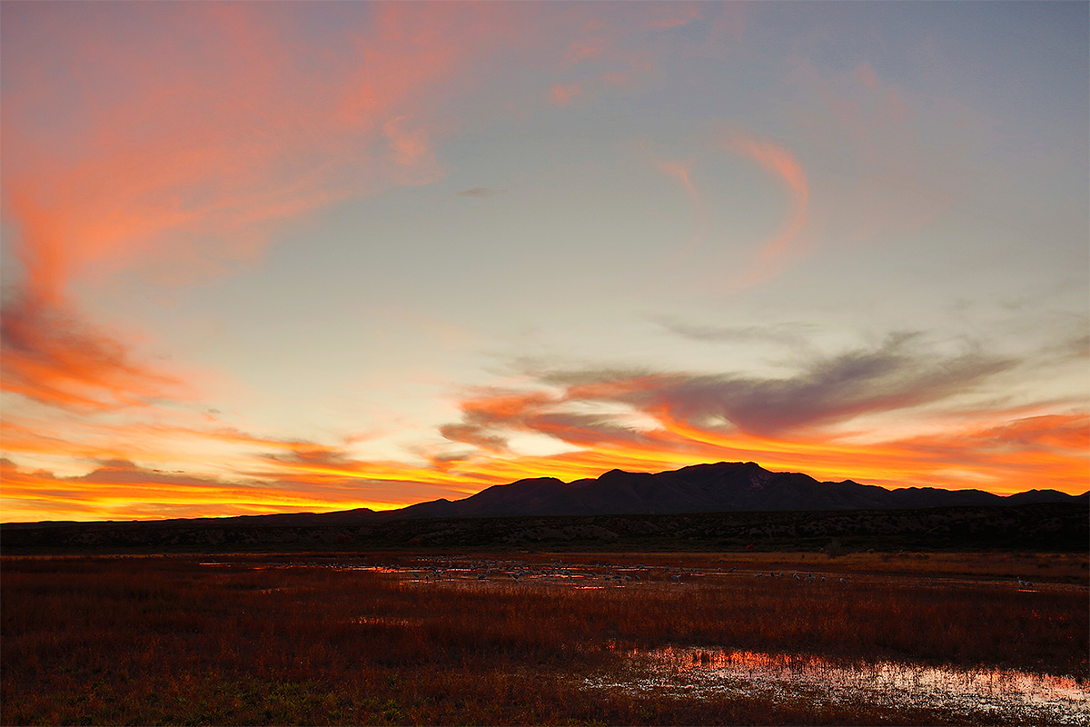 sunset-at-crane-pools-_a1c7950-bosque-del-apache-nwr-san-antonio-nm