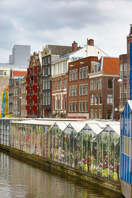 flower-district-along-canal-_a1c1160-amsterdam-holland