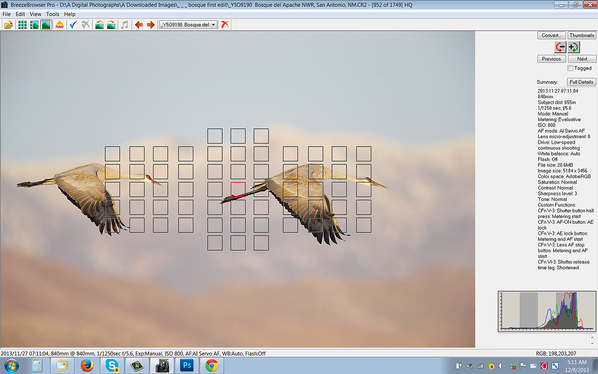 brbr-screen-capture-sandhill-crane-pair