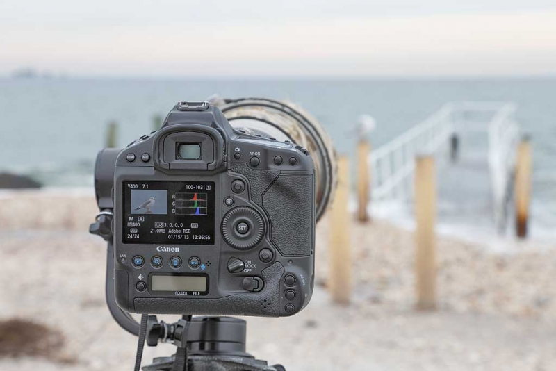 back-of-camera-at-pier-_q8r0189-jamesport-new-york