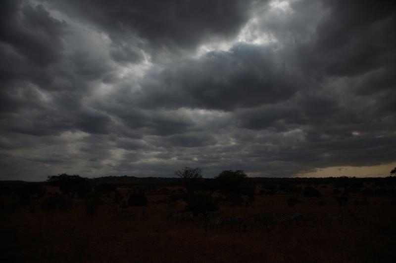_a1c2720-tarangire-national-park-tanzania