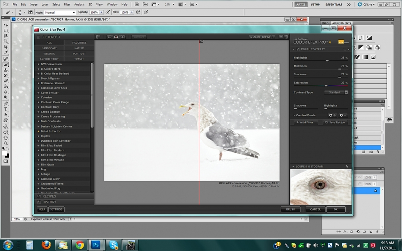 gl-gull-tonal-contrast