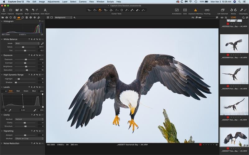 C-1-landing-eagle