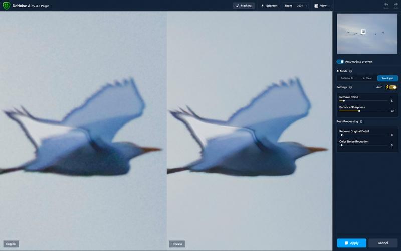 DeNoise-in-Cattle-Egrets-funky-flight-1