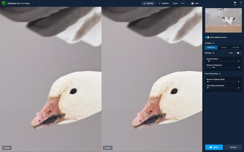 DeNoise-on-Snow-Goose-flight-soft-light