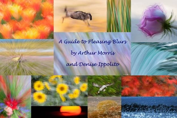 Guide to Pleasing Blurs