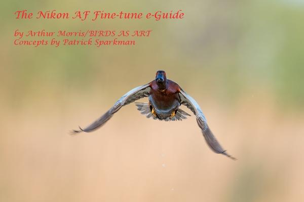 NIKON-AF-e-Guide-cover