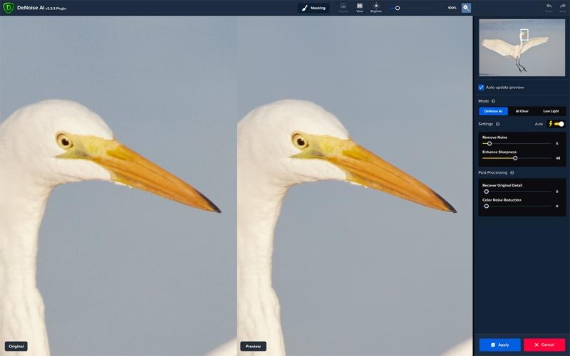 R5-grt-egret-DeNoise-1
