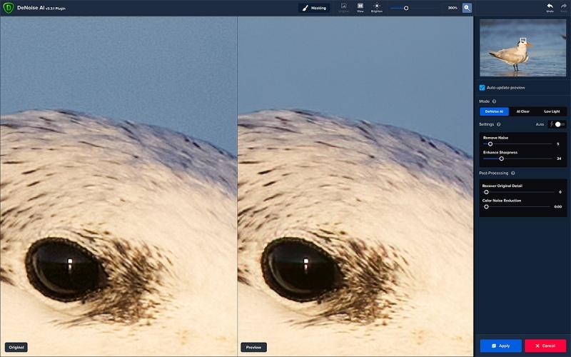 Roy-Tern-eye-DeNoise-1