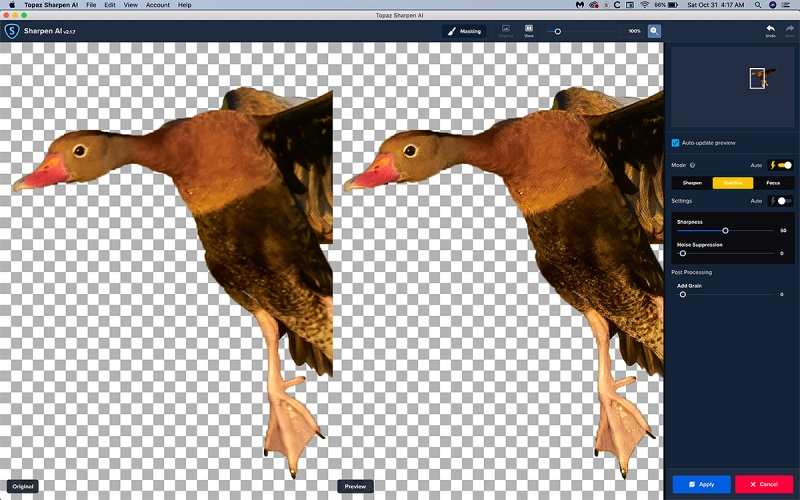 SH-AI-upper-duck-2