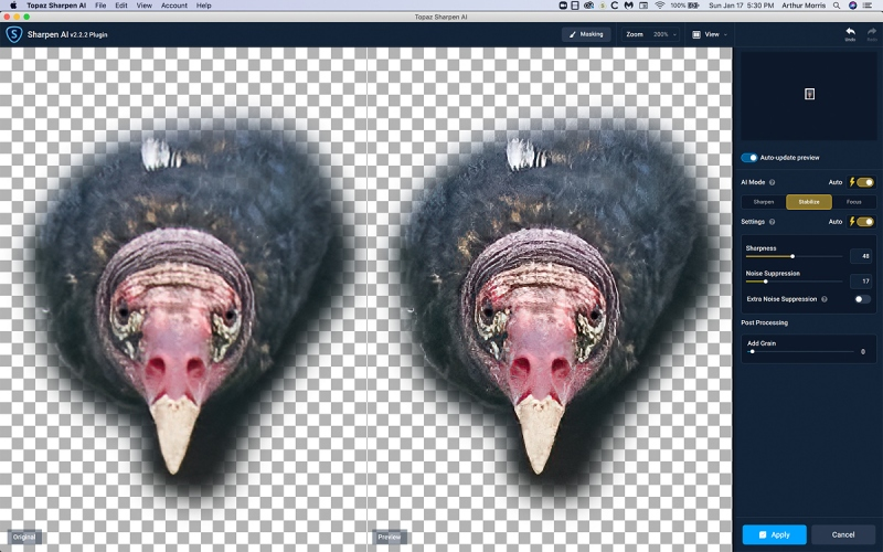 Sharpen-AI-on-vulture-face-1