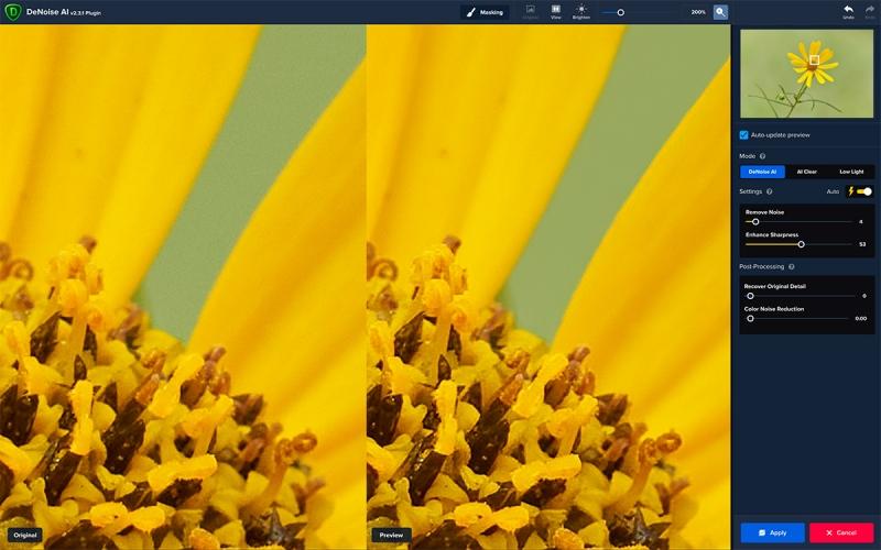 Sunflower-DeNoise-at-200-1