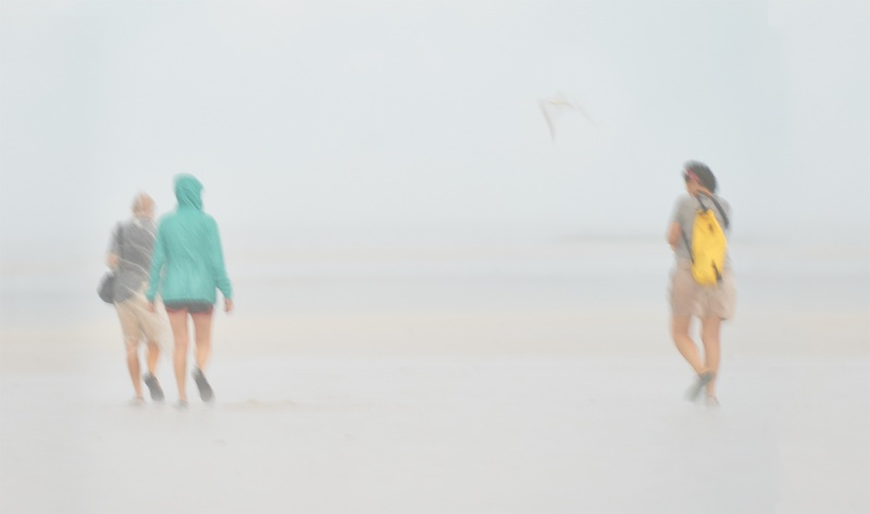 beachwalkers-in-the-rain-_A9B9012-Fort-DeSoto-Park-FL-1