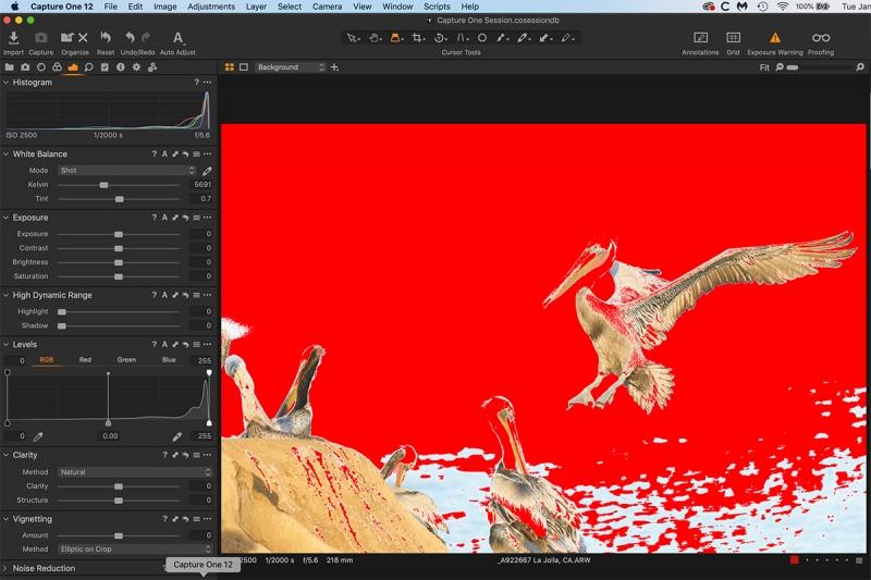 over-exp-pelican-C-1-scrn-capt