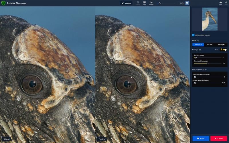 wood-Stork-head-DENOISE-1