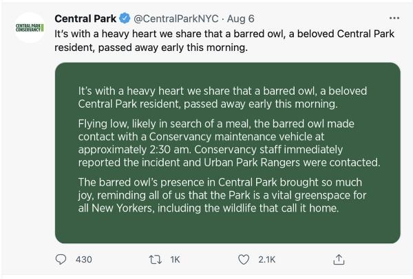 CPark-twitter-1