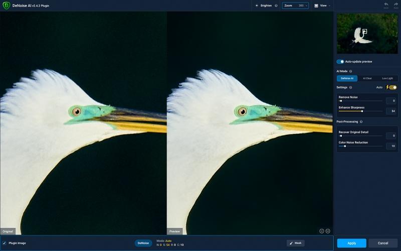 Great-Egret-spotlit-Denoise-1