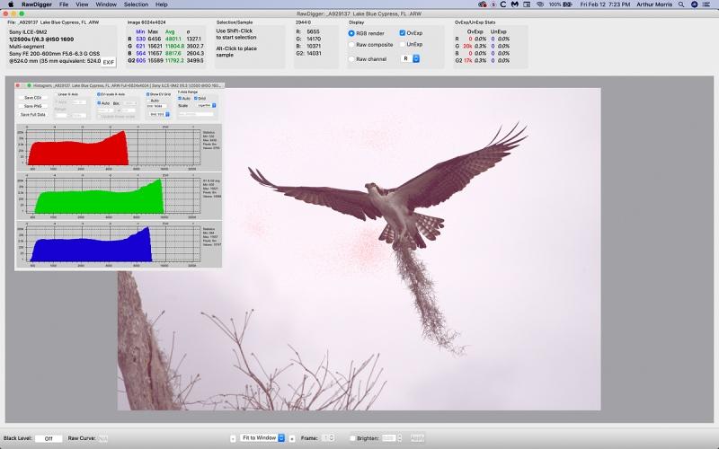 Osprey-RawDigger-white-sky-1