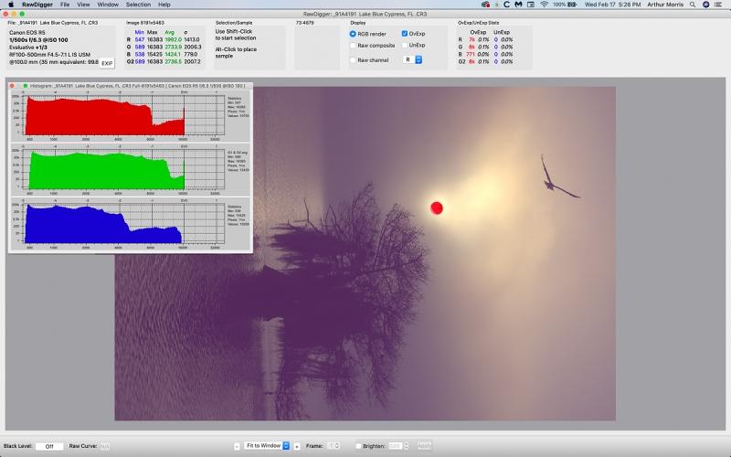 Osprey-foggy-sunrise-RawDigger-1