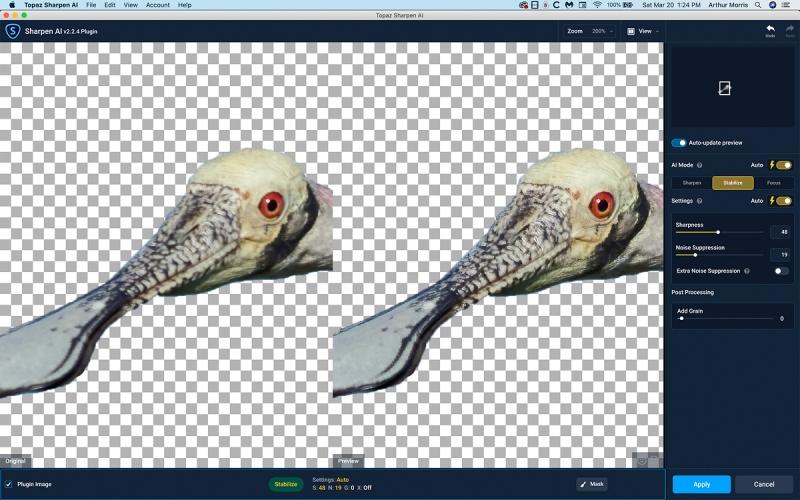 Spoonbill-incoming-head-Sharpen-AI-1