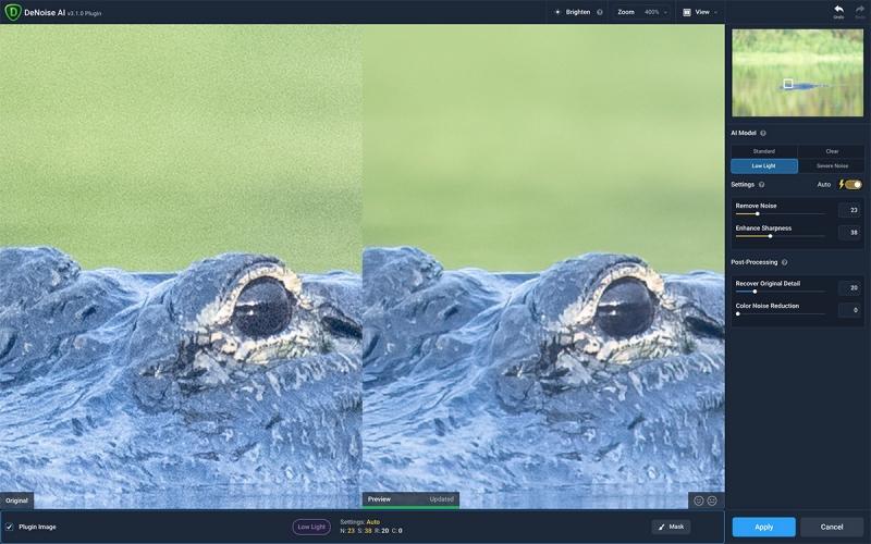 alligator-DeNoise-1