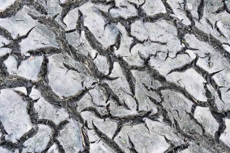 dried-mud-pattern-shot-_A1B2264-Indian-Lake-Estates-FL-