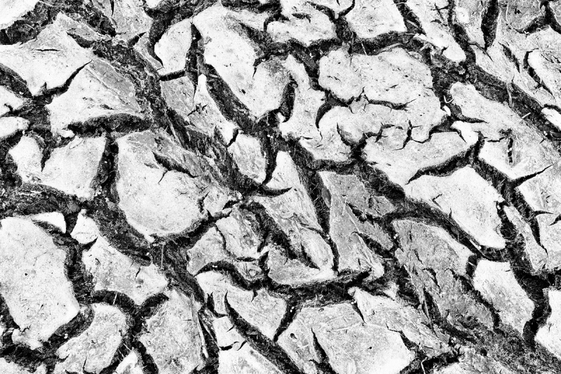 dried-mud-pattern-shotBW-SEP-_A1B2264-Indian-Lake-Estates-FL-