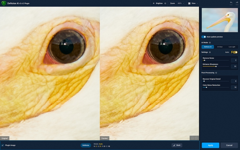 soft-light-WH-pelican-DeNoise-1