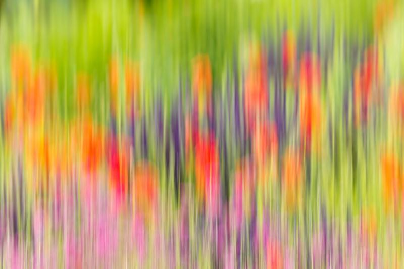 flower-bed-blur-_y9c0670-chanticleer-gardens-wayne-pa_0