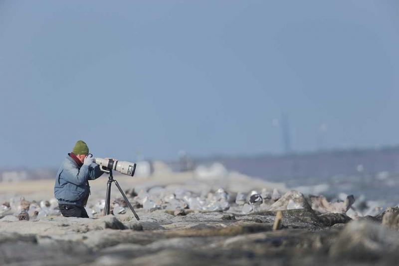 09u0288-barnegat-jetty-nj