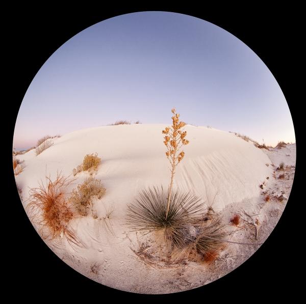 yucca-circle-fish-eye-pre-dawn-1400-sq-_mg_0078-white-sands-national-monument-nm